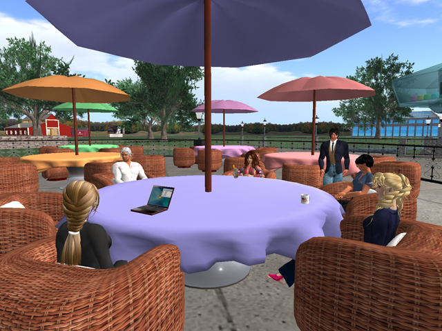 Meetings in the Second Life virtual world
